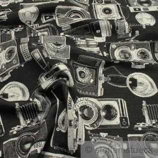 Stoff Baumwolle Polyester Gobelin Kamera Retro Camera Fotoappart Snapshot