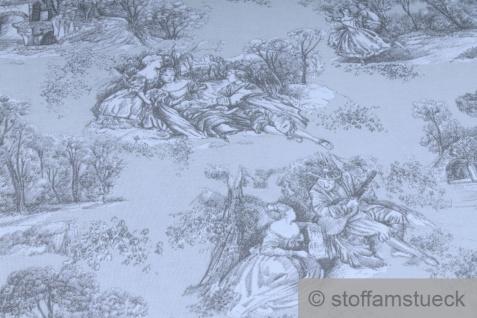 Stoff Baumwolle Rips Toile de Jouy Dorf hellgrau anthrazit breit 280 cm - Vorschau 3