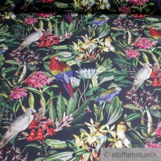 Stoff Baumwolle schwarz Dschungel Papagei Blatt Blätter Palme
