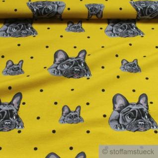 Stoff Baumwolle Elastan Single Jersey senf Französische Bulldogge Hund - Vorschau 2