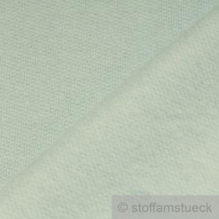0, 5 Meter Stoff Baumwolle Single Jersey hellblau angeraut Sweatshirt weich - Vorschau 3