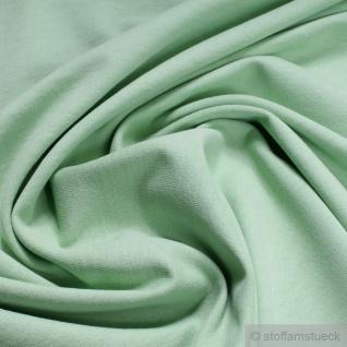 Stoff Baumwolle Single Jersey angeraut pastellgrün Sweatshirt weich dehnbar grün