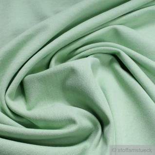 Stoff Baumwolle Single Jersey pastellgrün angeraut Sweatshirt weich dehnbar grün