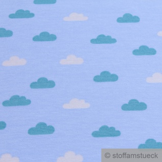 0, 5 Meter Stoff Baumwolle Elastan Single Jersey French Terry hellblau Wolke - Vorschau 2