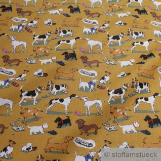 Stoff Baumwolle ocker Hunde Hundeschule Welpen Baumwollstoff