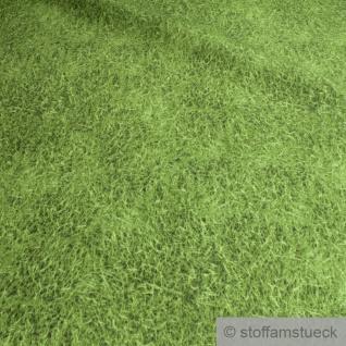 Stoff Baumwolle Polyester Gras Grashalme Rasen Wiese Fotodruck grün