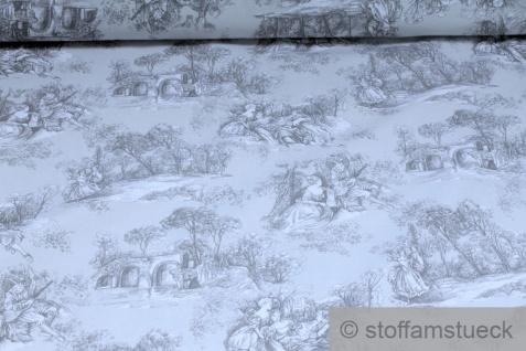 Stoff Baumwolle Rips Toile de Jouy Dorf hellgrau anthrazit breit 280 cm - Vorschau 1