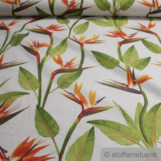 Stoff Baumwolle Polyester Rips natur Paradiesvogelblume Papageienblume