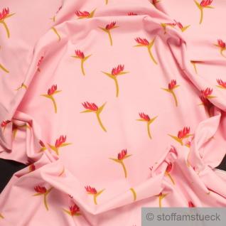 0, 5 Meter Stoff Baumwolle Elastan Single Jersey rosa Papageienblume