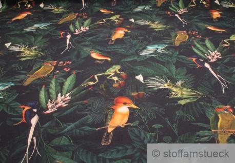Stoff Baumwolle Rips nachtblau Dschungel Frosch Vogel Tropen