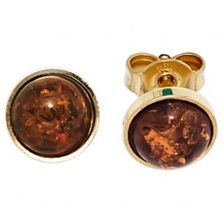 Ohrstecker rund 333 Gold Gelbgold 2 Bernsteine orange Ohrringe Bernsteinohrringe