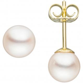 Ohrstecker 585 Gold Gelbgold 2 Akoya Perlen 6 mm
