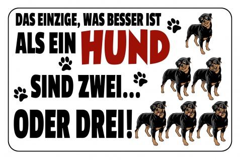 Blechschild Spruch Das einzige was besser ist als ein Hund Metallschild Wanddeko 20x30 cm tin sign