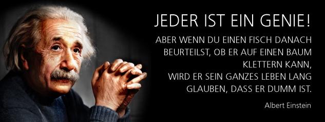 Blechschild Spruch Jeder ist ein Genie! -Einstein- Metallschild 27x10 cm Wanddeko tin sign