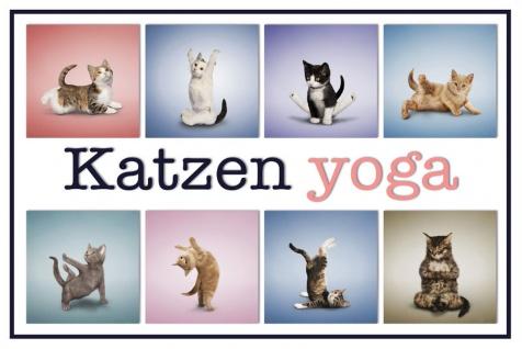 Schatzmix Blechschild Katzen Yoga 1 Metallschild 20x30 cm Wanddeko tin sign