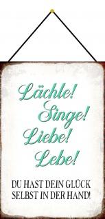 Blechschild Spruch Lächle! Singe! Liebe! Lebe! Metallschild 20x30 Deko m. Kordel