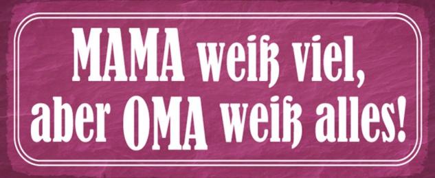 Blechschild Spruch Mama Oma alles wissen Metallschild 27x10 cm Wanddeko tin sign