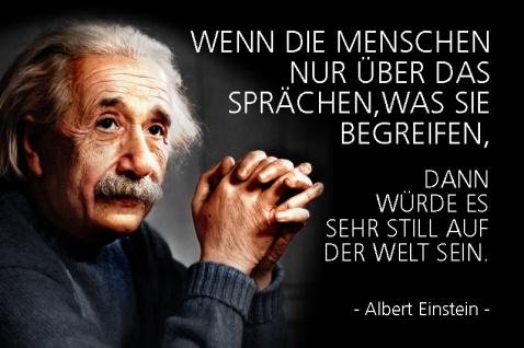 Albert Einstein - Wenn die Menschen nur über das sprächen, was sie begreifen?Spruch Blechschild 20x30 cm