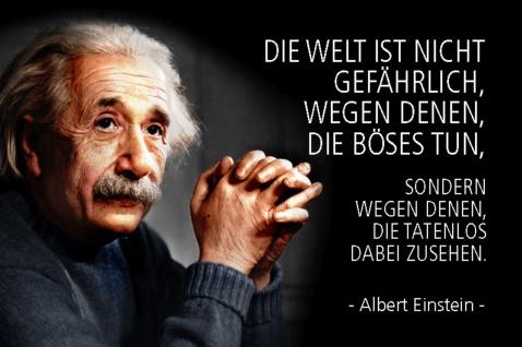 Blechschild Spruch Einstein die Welt ist nicht gefährlich Metallschild Wanddeko 20x30 cm tin sign
