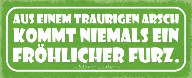 Blechschild Spruch Aus einem trauigen Arsch kommt niemals ein fröhlicher Furz - Martin Luther- Metallschild 27x10 Deko tin sign