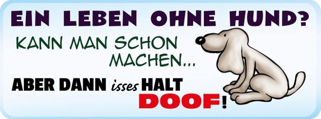 Blechschild Spruch ein Leben ohne Hund? Metallschild 27x10 cm Wanddeko tin sign