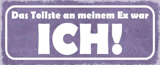 Blechschild Spruch Das tollst an meinem Ex war ICH! Metallschild 27x10 Deko