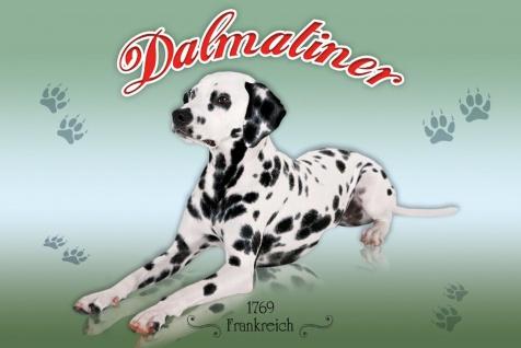 Schatzmix Blechschild Dalmatiner Frankreich 1769 Hund Metallschild 20x30 cm Wanddeko tin sign