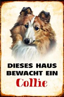 Blechschild Hund Dieses Haus bewacht Collie Metallschild Wanddeko 20x30 cm tin sign