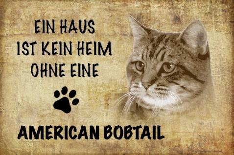 Ein haus ist kein heim ohne eine American bobtail katze blechschild