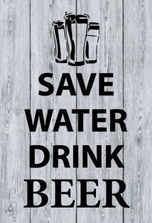 Save Water - Drink Beer Metallschild Wanddeko 20x30 tin sign