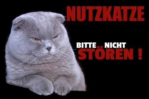 """"""" Nutzkatze bitte nicht..."""" blechschild, lustig, comic, metallschild"""