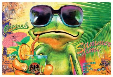 Summertime witziges Cocktail frosch blechschild