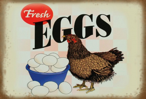 Blechschild Fresh Eggs (in Schüssel) Metallschild Wanddeko 20x30 cm tin sign
