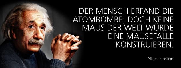 Blechschild Spruch Der Mensch erfand die Atombombe, doch keine Maus der Welt würde eine Mäusefalle konstruieren. -Einstein- Metallschild 27x10 cm Wanddeko tin sign