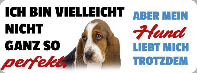 Blechschild Spruch aber mein Hund liebt mich trotzdem Metallschild 27x10 cm Wanddeko tin sign
