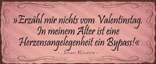 Blechschild Spruch Erzähl mir nichts vom Valentinstag Metallschild Wanddeko 27x10 cm tin sign