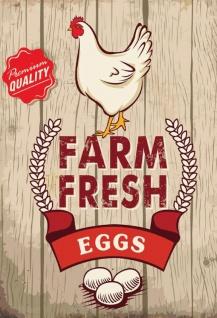 Farm Fresh Eggs premium quality eier blechschild