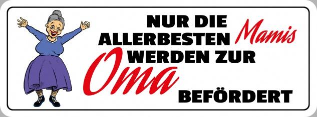 Blechschild Spruch zur Oma befördert Metallschild 27x10 cm Wanddeko tin sign