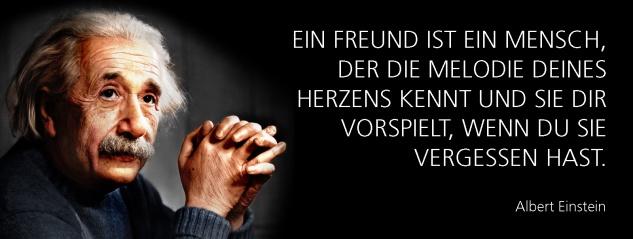 Blechschild Spruch Ein Freund ist ein Mensch, der die Melodie deines Herzens kennt und sie dir vorspielt, wenn du sie vergessen hast. -Einstein- Metallschild 27x10 cm Wanddeko tin sign