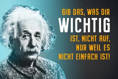 Blechschild Spruch Gib Das was dir A.Einstein Metallschild Wanddeko 20x30 cm tin sign