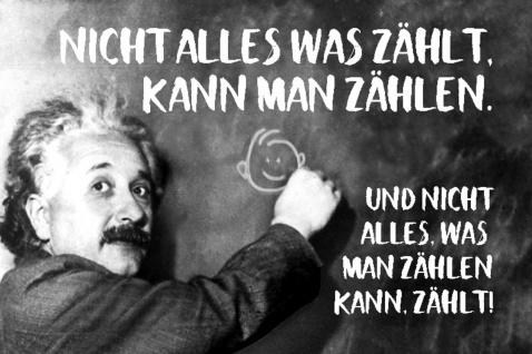 Blechschild Spruch Nicht alles was zählt kann man Einstein Metallschild Wanddeko 20x30 cm tin sign