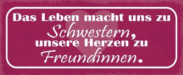 Blechschild Spruch Das Leben macht uns zu Schwestern, unsere Herzen zu Freundinnen Metallschild 27x10 Deko tin sign