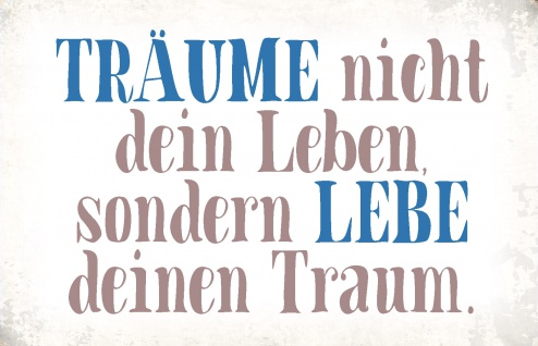 Blechschild Spruch Träume nicht dein Leben Metallschild Wanddeko 20x30 cm tin sign
