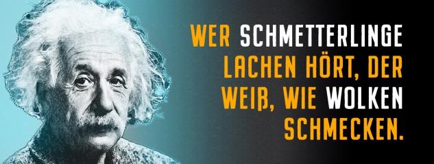 Blechschild Einstein: Wer Schmetterlinge lachen hört Metallschild Wanddeko 27x10 cm tin sign