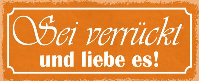 Blechschild Spruch Sei verrückt und liebe es! Metallschild 27x10 Deko tin sign