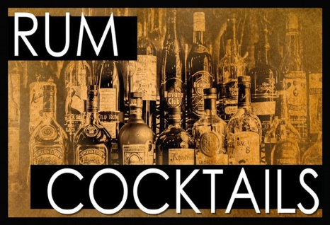 Rum Cocktails Metallschild Wanddeko 20x30 cm tin sign