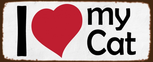BlechschiId Spruch Katze I love my Cat weißes Metallschild 27x10 cm Wanddeko tin sign