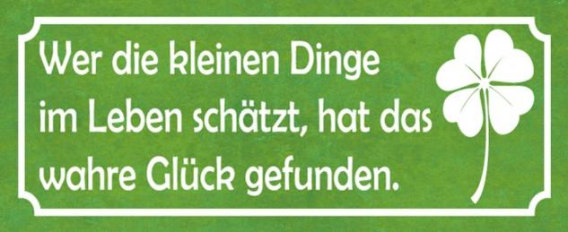 Blechschild Spruch kleine Dinge im Leben Glück Metallschild 27x10 cm Wanddeko tin sign
