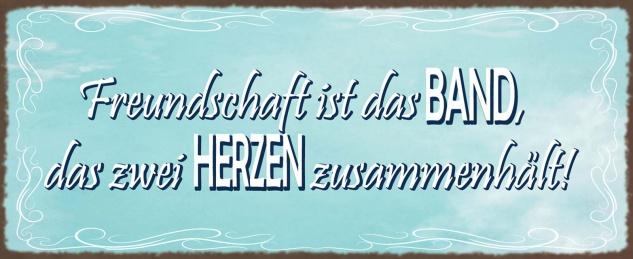 Blechschild Freundschaft ist das Band, das 2 Herzen zusammenhält Metallschild Wanddeko 27x10 cm tin sign