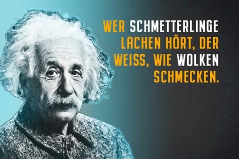 Blechschild Spruch Einstein Wer Schmetterlinge lachen Metallschild Wanddeko 20x30 cm tin sign - Vorschau